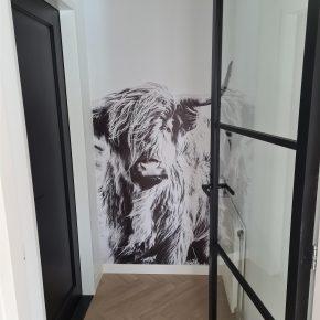 Hoe kan je een kleine ruimte decoreren met fotobehang?